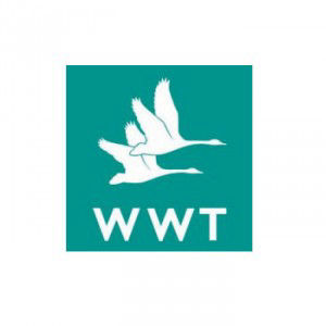 Wildfowl and Wetland Trust